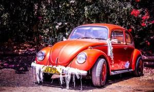 חיפושית מקושטת לחתונה