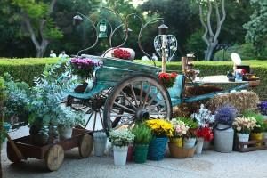 עמדת פרחים ואנטזיה